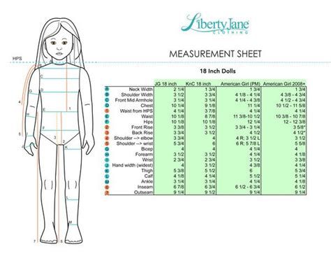 fashion doll measurements 83 best doll comparisons and measurements images on