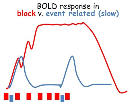 block design vs event related fmri study design