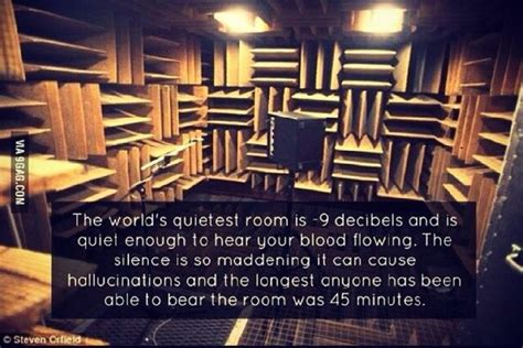 where is the quietest room in the world 13 real things that would make terrifying encounters