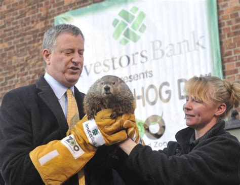 groundhog day staten island zoo de blasio to skip groundhog day celebration at staten