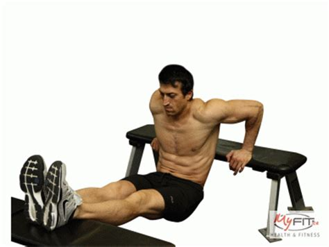 bench dips for chest bench dips exercise myfit