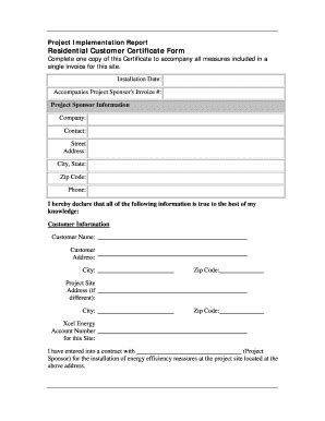 Implementation Report Template Project Report Template Forms Fillable Printable