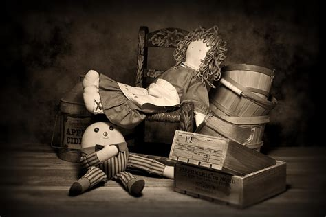rag doll live rag doll photograph by tom mc nemar