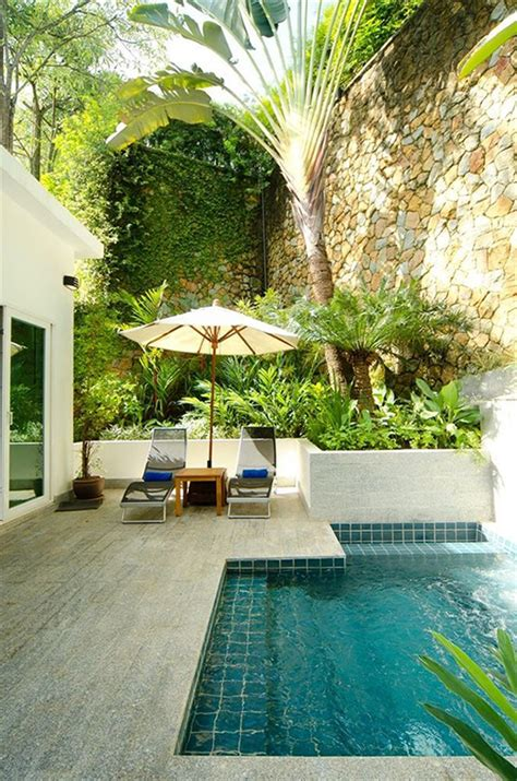 18 Gorgeous Plunge Pools For Tiny Backyard Home Design Backyard Plunge Pool