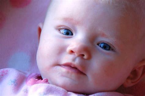 wallpaper anak bayi gambar bayi bayi bermata biru
