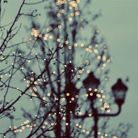 winter lights photograph by moss