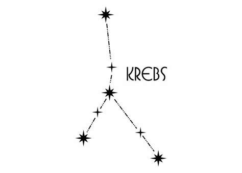 wandtattoo sternbild krebs sterne sternzeichen