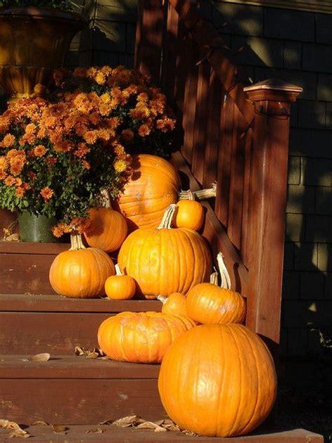 Pumpkins On Porch porch pumpkins fall decorating