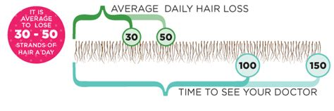 Shedding More Than Usual by Hair Shedding Does Your Hair Shed Much Beautylish