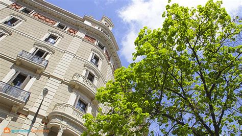acridophagus katun cozy flat in barcelona pin by beatrice beskin on minimal minimal batll祿