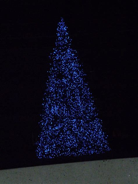 Christmas Tree Blue Lights Www Imgkid Com The Image Tree With Blue Lights
