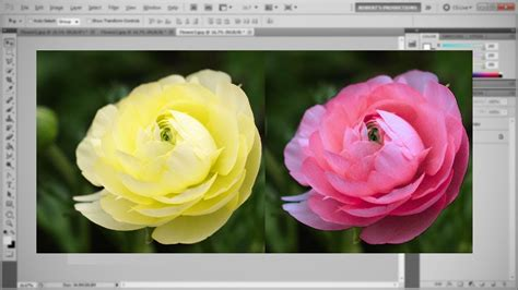 how to match colors in photoshop photoshop match color