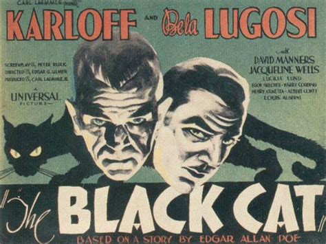 film mandarin black cat the black cat 1934 review pre code com