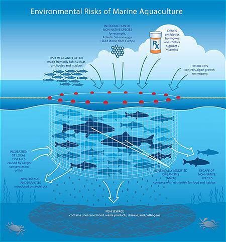 environmental design adalah mariculture wikipedia