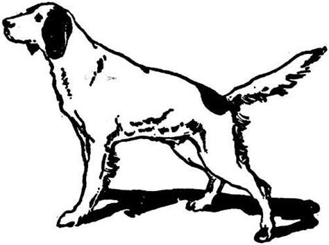 imagenes animadas blanco y negro perros en blanco y negro perros gif gifs animados perros