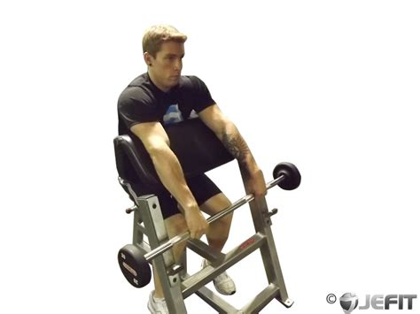 preacher bench exercises barbell reverse preacher curls exercise database jefit