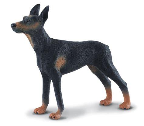 Schleich Kitten Figure collecta 88086 dobermann pinscher 10 cm hunde und katzen
