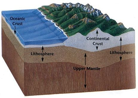 section of lithosphere that carries crust blueplanet bi the lithosphere