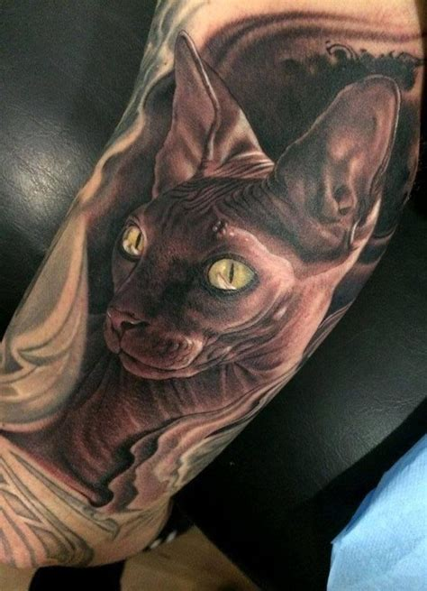 tattoo bald cat sweet a hairless cat tattoos pinterest sphynx cat