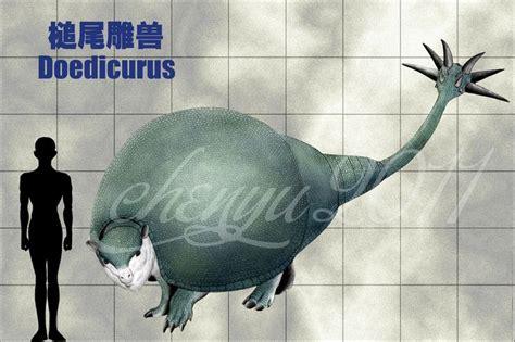 images  extinct  pinterest