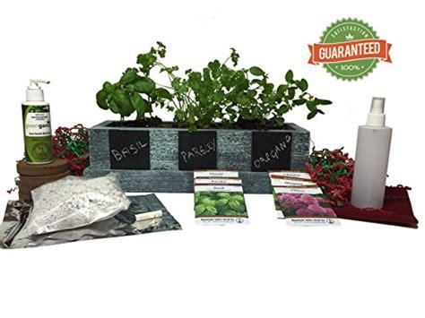 kitchen herb garden kit indoor kitchen herb garden kit fresh ready to pick herbs