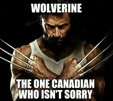 Wolverine Meme - wolverine the canadian that is never sorry