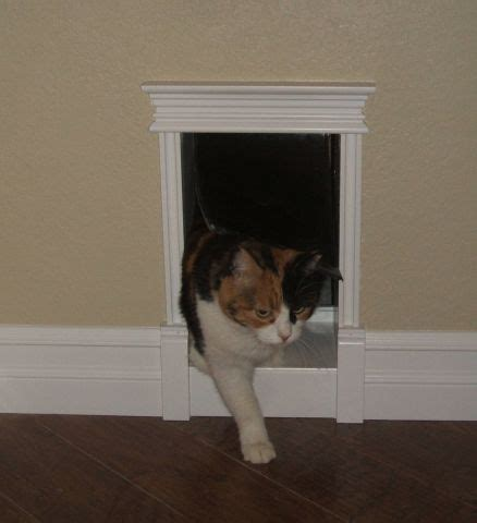 So With Our Laundry Room Reno The Kitty S Need A Custom Interior Pet Door