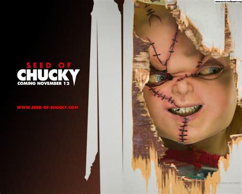 film chucky 5 en streaming chuckys a stud chucky hd wallpaper movies wallpapers