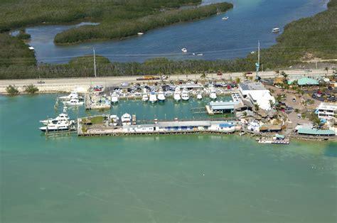 boat r islamorada postcard inn beach resort and marina in islamorada fl