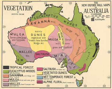 australia in map but where is the green sheep maps put the in