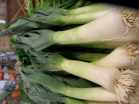 leek swing the local harvest farm market bc farm fresh