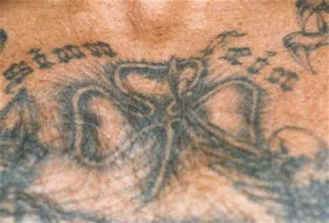 arian brotherhoods tattoos white prison gangs aryan brotherhood