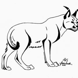 african cats coloring pages african golden cat on the tree coloring page animal free