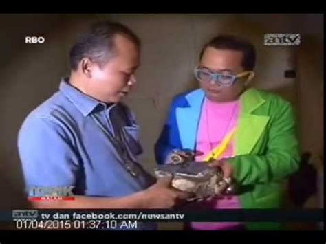Indocrase Ijo Hijau Hexos Aceh wanita cantik koleksi batu cincin garut ijo lumut doovi