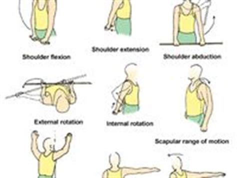 images  fibro lupus exercise  pinterest yoga poses fibromyalgia pain  foam