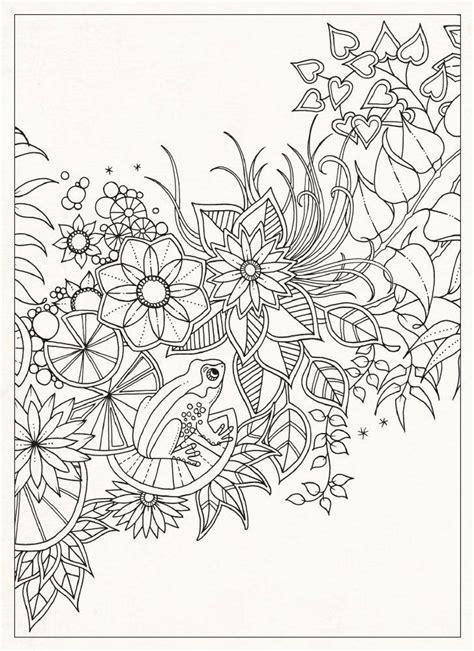 secret gardens coloring  adults  coloring  pinterest