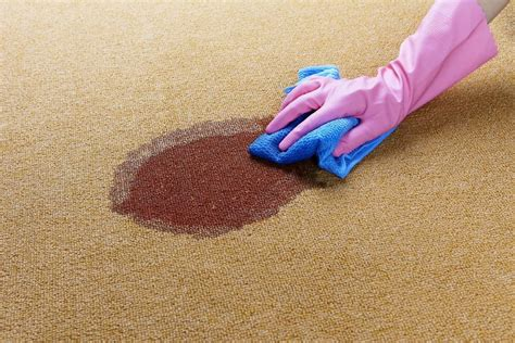 Cheap Rug Cleaning by Cheap And Easy Carpet Cleaning Solutions Living On The Cheap