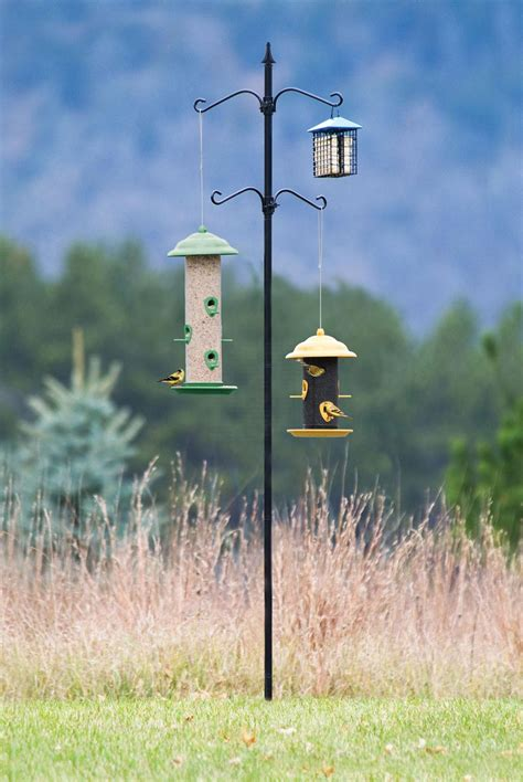 feeder stand stand for bird feeder birdcage design ideas