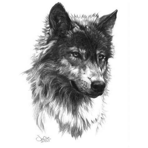 25 best ideas about wolf tattoo design on pinterest
