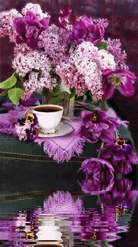 tea lilacs pictures   images  facebook