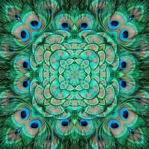 peacock tile peacocks pinterest