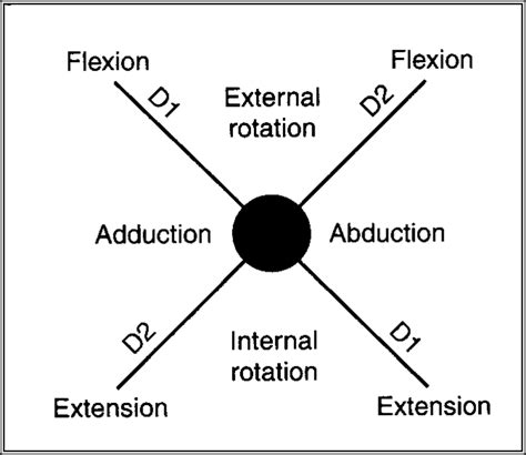 pnf pattern video proprioceptive neuromuscular facilitation therapeutic