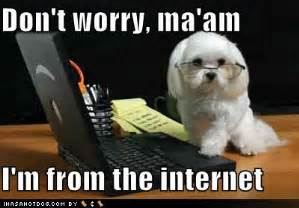 Internet Dog Meme - best of the quot i m from the internet quot meme smosh