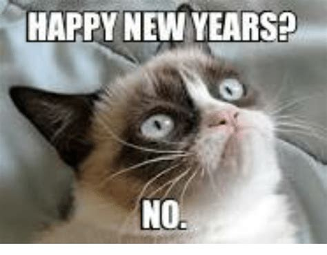 Happy New Year Cat Meme - funny grumpy cat and new year s memes of 2016 on sizzle
