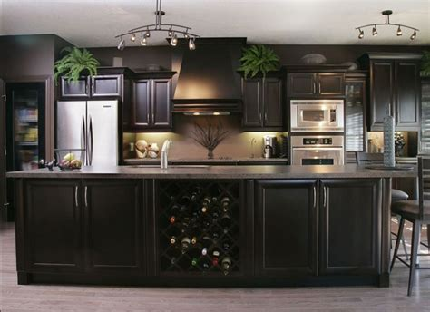 Espresso Color Kitchen Cabinets by Best 25 Espresso Kitchen Ideas On Espresso