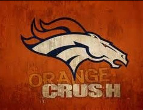 Go Broncos Meme - 465 best denver broncos images on pinterest denver
