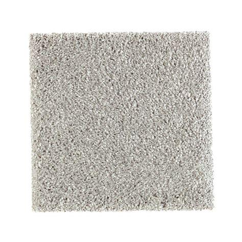 pet proof carpet petproof carpet sle whirlwind ii color navigator