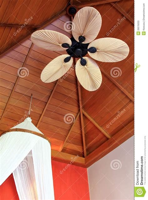Ceiling Fans With Leaf Shaped Blades by A Room With Palm Leaf Shaped Ceiling Fan Blade Stock Image