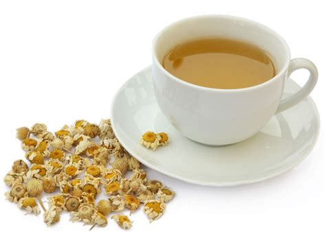 Chamomile Tea For Liver Detox by Chamomile Tea Matricaria Chamomilla Flowers