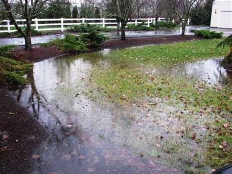backyard flooding solutions yard solving drainage problems fairfax county